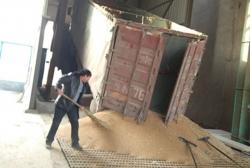 云南红泰糖业